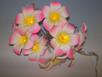 Dekorativní LED řetěz - magnolie -  teple bílá 10 LED